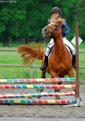 saut-obstacles-problemes-abords-1.jpg